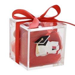 bomboniere laurea scatolina portaconfetti con placca argento