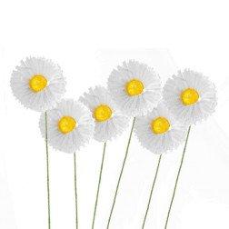 fiore margherita bianca e gialla per bomboniere fai da te